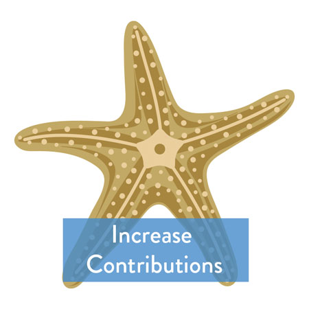 Increase Contributions Button