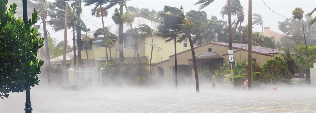 Hurricane Wind and Flooding